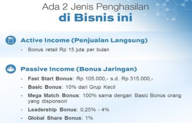 Jenis Penghasilan di Synergy Worldwide